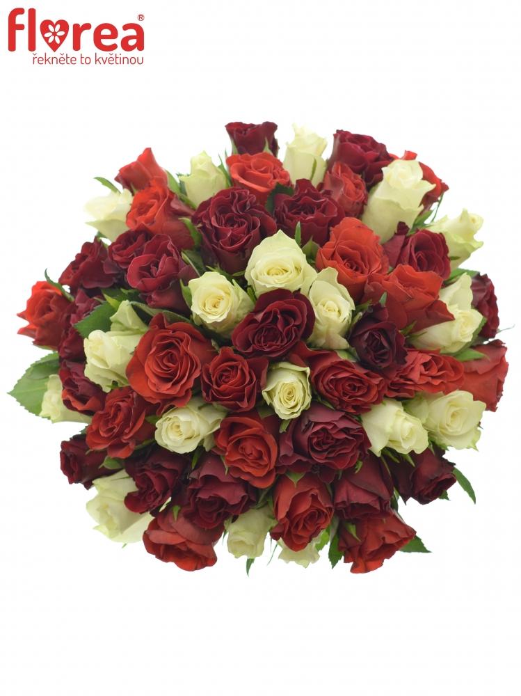 Kytice 55 růží míchaná ADIRA 30cm