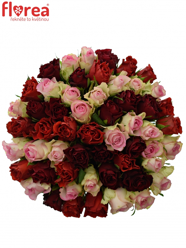 Kytice 55 růží PINK CHAMPAGNE 40cm