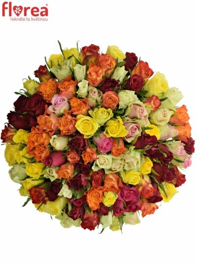 Kytice 100 růží MIX 40cm