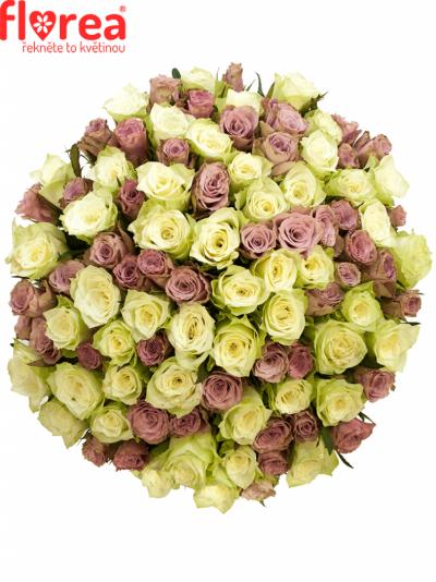 Kytice 100 míchaných růží NEONA 40cm