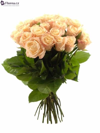 35 růží MEDEO