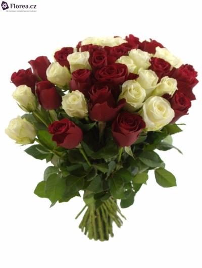 55 růží COUNTDOWN! + RED ALERT
