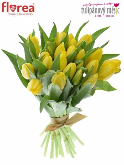 Benefice Amelie kytice 25 tulipánů STRONG GOLD