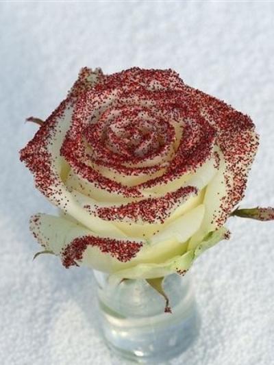 ROSA GLITTER RED 70cm (R 63)