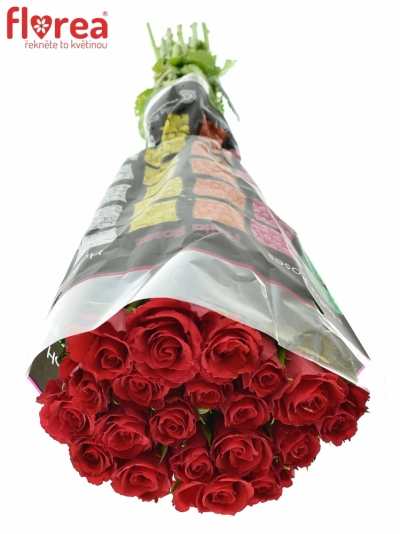 ROSA RED CALYPSO 60cm (S)