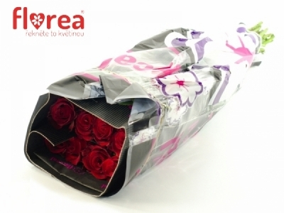 ROSA SEXY RED 70cm