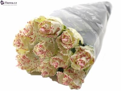 ROSA CHOCOLAT PEARL WHITE LOVE 60cm