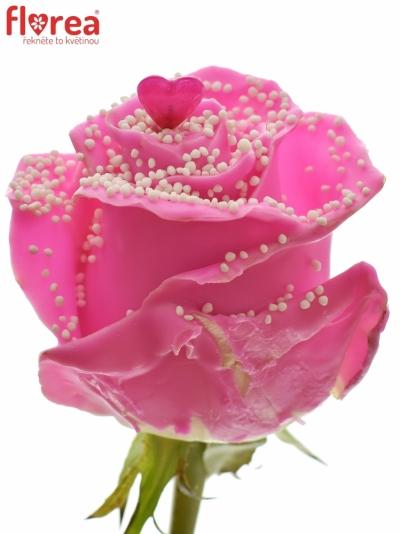 Čokoládová růže CHOCOLAT WHITE PEARL PINK LOVE 70cm (L)