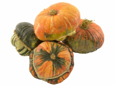 CUCURBITA TURKS TURBAN MIX x6