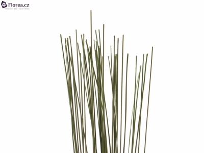 GRASS FLEXIGRASS 90cm