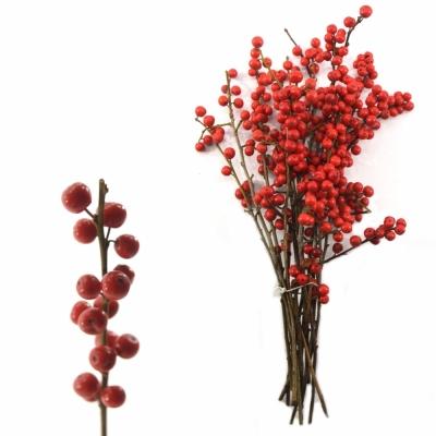ILEX VERTICILLATA RED 35cm