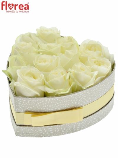 Krabička bílých růží Avalanche+ šampaň 19x9cm
