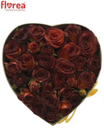Krabička červených růží CHOCOCCINO šampaň 15x8cm