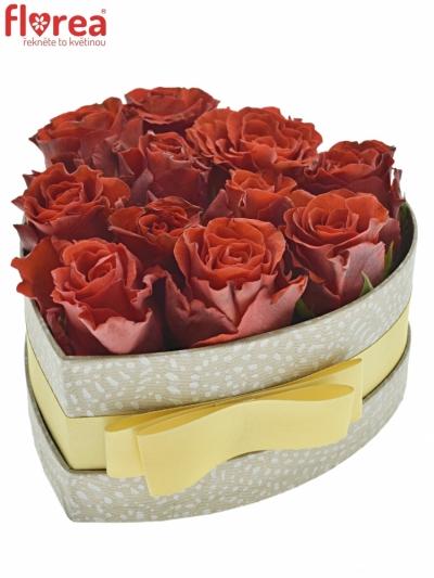 Krabička červených růží RED CORVETTE šampaň 15x8cm