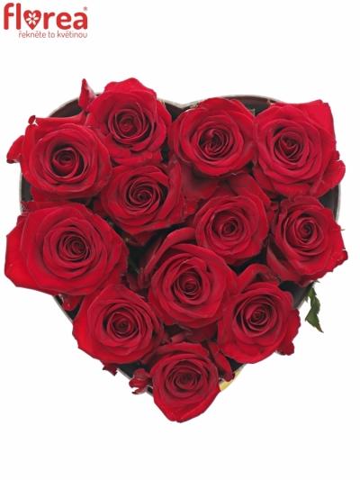 Krabička červených růží RED EAGLE šampaň 19x9cm