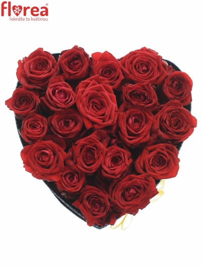 Krabička červených růží RED NAOMI modrá 24x10cm