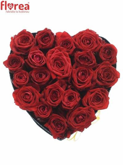 Krabička červených růží RED NAOMI šampaň 24x10cm