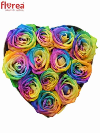 Krabička duhových růží RAINBOW šampaň 19x9cm