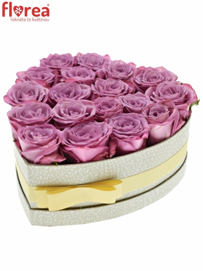 Krabička fialových růží MOODY BLUES šampaň 24x10cm
