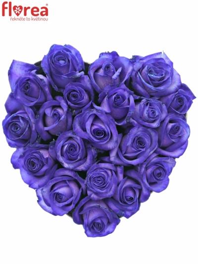 Krabička fialových růží PURPLE VENDELA šampaň 19x9cm