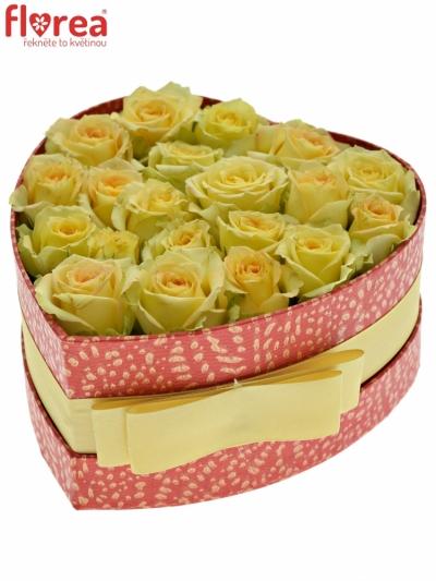 Krabička krémových růží ESTEVANA červená 15x8cm