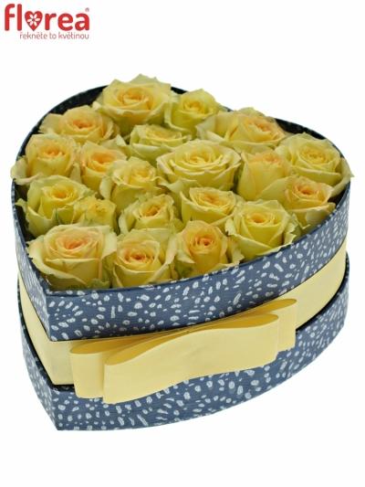 Krabička krémových růží ESTEVANA modrá 15x8cm