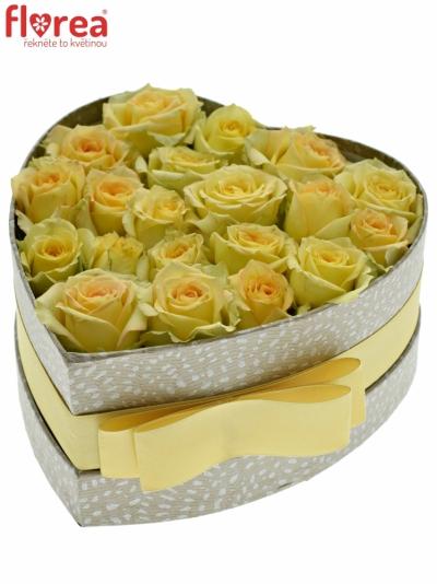 Krabička krémových růží ESTEVANA šampaň 15x8cm