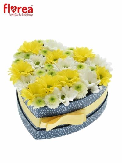 Krabička květin AVRIL modrá 15x8cm