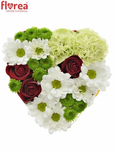Krabička květin BAIBRE červená 15x8cm