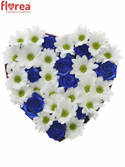 Krabička květin BANDOLINA červená 24x10cm