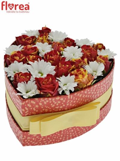Krabička květin BOUNTY FLASH červená 15x8cm