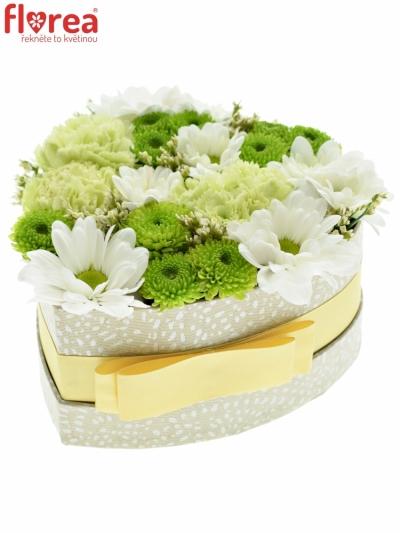 Krabička květin CAELIN šampaň 15x8cm