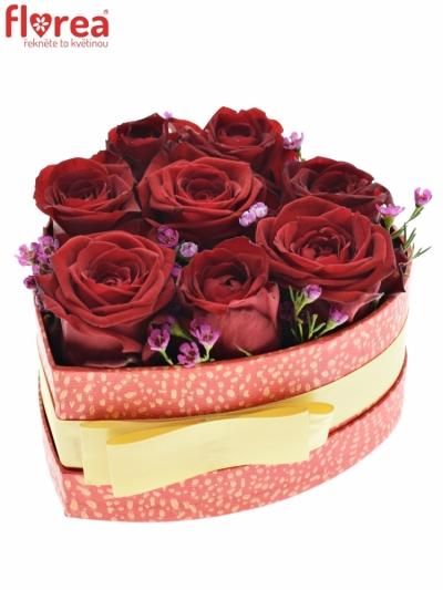 Krabička květin CHAMIA červená 15x8cm