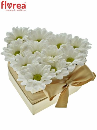 Krabička květin srdce champagne HAGNE 14x6cm
