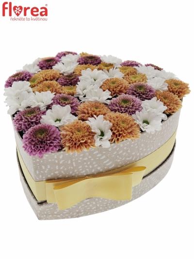 Krabička květin ELEISHA šampaň 19x9cm