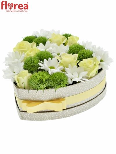 Krabička květin EMMIA šampaň 24x10cm