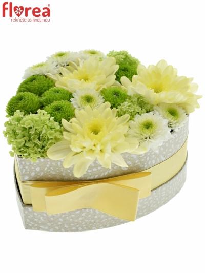 Krabička květin GRANINA šampaň 15x8cm