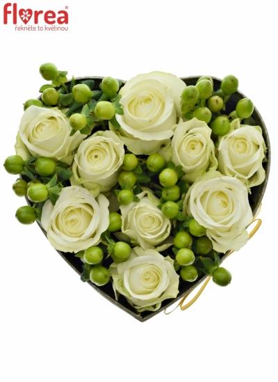 Krabička květin GREEN KITTY šampaň 15x8cm
