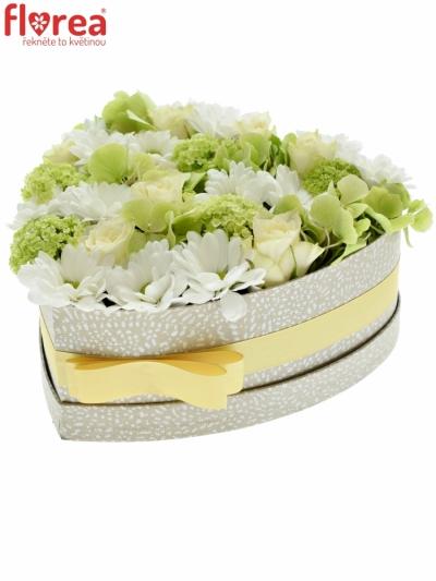 Krabička květin GRENADIA šampaň 24x10cm