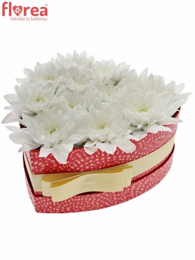 Krabička květin JOMBINA červená 19x9cm