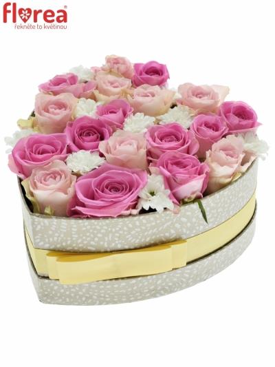 Krabička květin LINDA šampaň 19x9cm