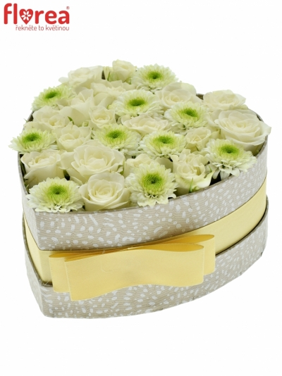 Krabička květin LINEA šampaň 15x8cm