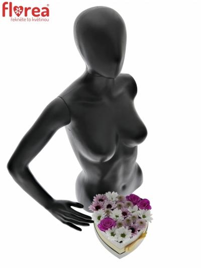 Krabička květin MEDUSIA šampaň 19x9cm