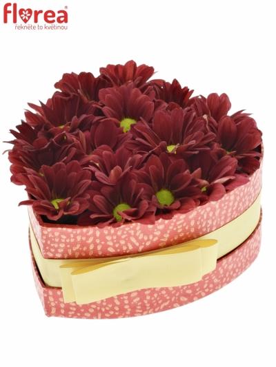 Krabička květin MERLOT červená 15x8cm