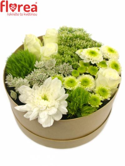 Krabička květin natural MALVA Ø20v10cm