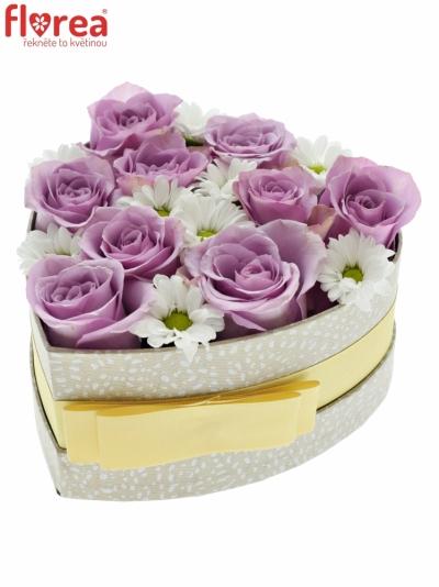 Krabička květin NIGALA šampaň 15x8cm