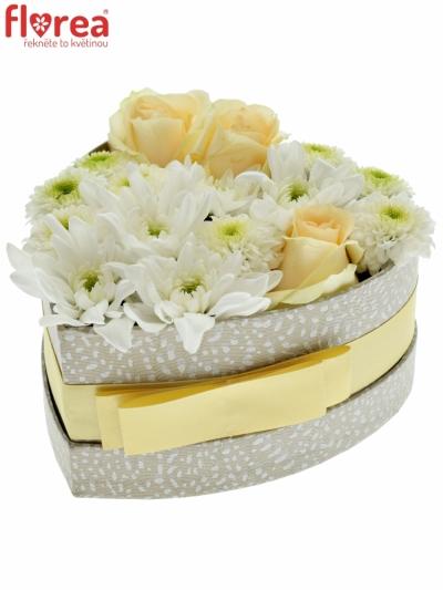 Krabička květin NIICHE šampaň 15x8cm