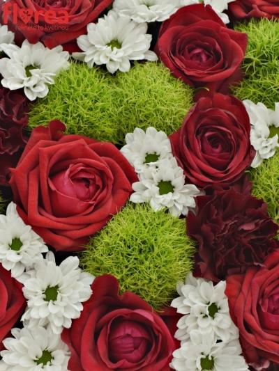 Krabička květin RED MAYA červená 24x10cm