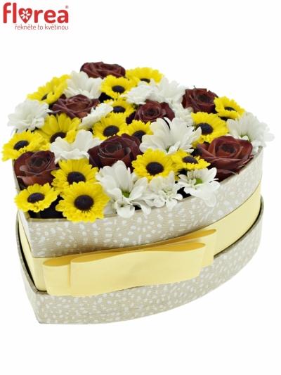 Krabička květin SANOKINA šampaň 15x8cm