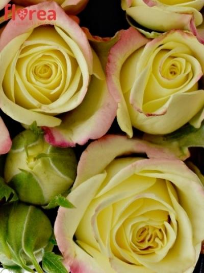 Krabička květin srdce černé KELLY 14x6cm